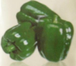 31. paprika hijau