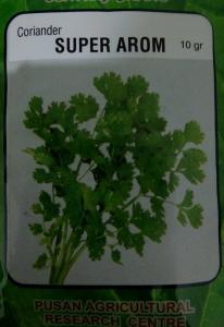 coriander super arom