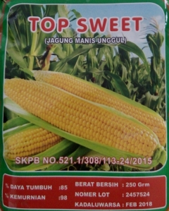 jagung-manis-top-sweet