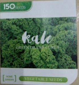 kale green drawf curly
