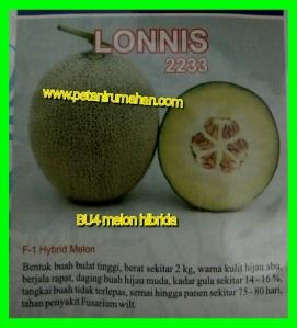melon-hibrida-lonnis