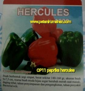 paprika-hercules