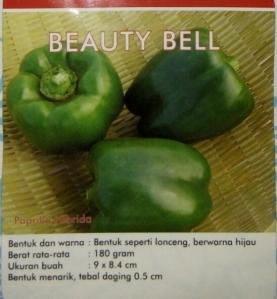 paprika hijau beauty bell