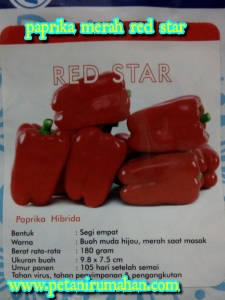 paprika-red-star