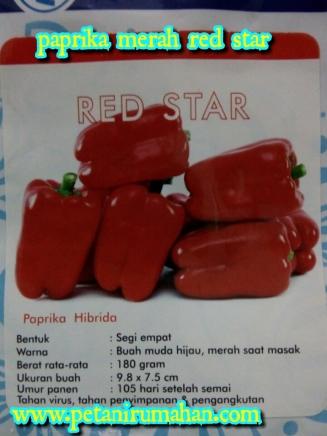 paprika-red-star