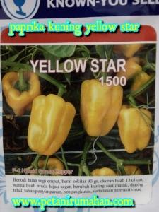 paprika-yellow-star