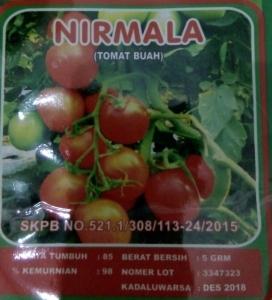 tomat buah nirmala