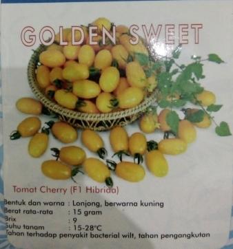 Tomat Cherry Kuning golden sweet
