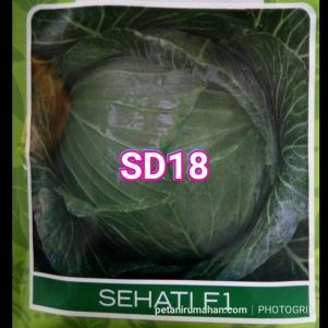 sd18 kubis sehati f1