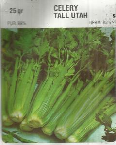 Seledri Tall Utah