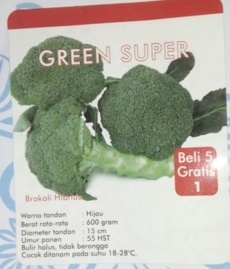 brokoli hibrida green super