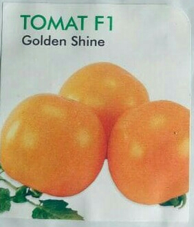 Tomat Orange Hibrida Golden Shine