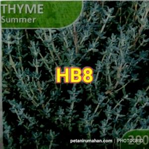 Thyme Summer