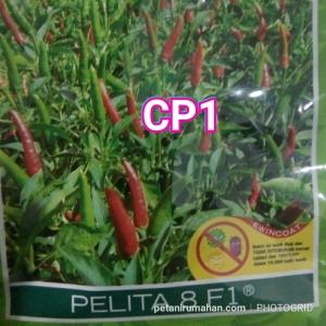 cp1 rawit hijau pelita 8