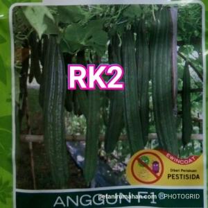 rk2 oyong anggun f1