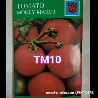 tm10 tomat money maker