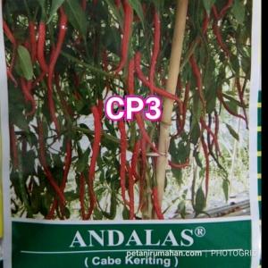 cp3 andalas
