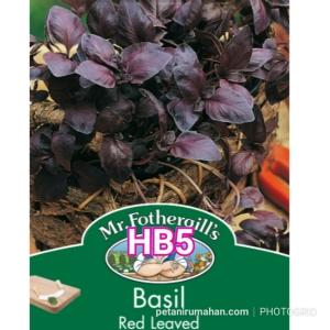 HB5 BASIL RED