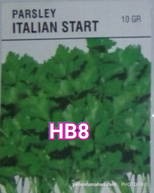 HB8 PARSLEY ITALIAN