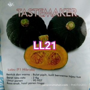 ll21 tastemaker
