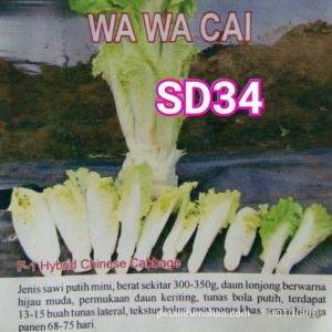 sd34 wawacai