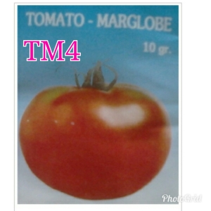 tm4 marglobe