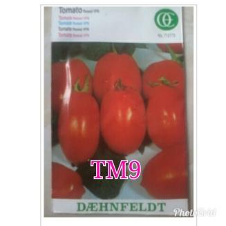 tm9 rossol