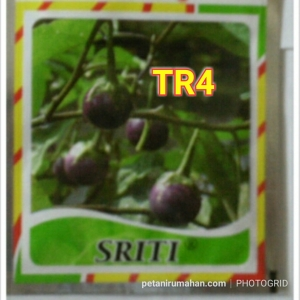 tr4 sriti