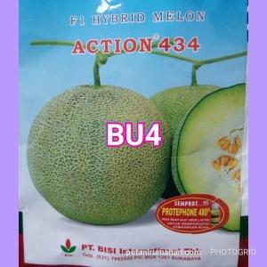 bu4 melon hibrida