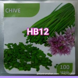 hb12 chives bawang kucai