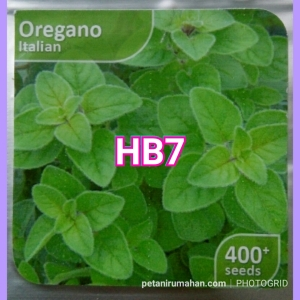 hb7 oregano italian