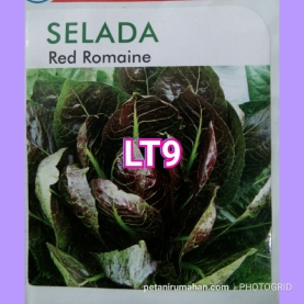 lt9 red romaine
