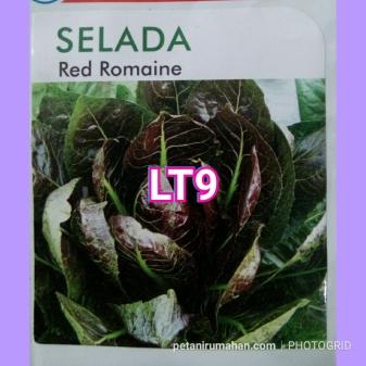 lt9 red romaine