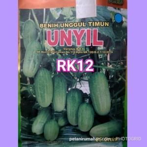 rk12 baby mentimun unyil