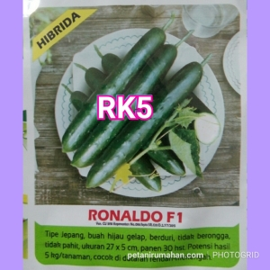 rk5 timun jepang ronaldo