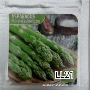 ll21 asparagus