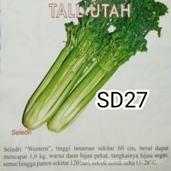 sd27 tall utah