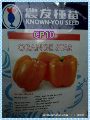 cp10 orange star