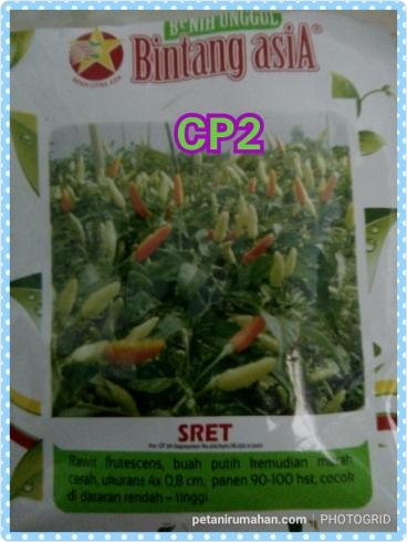 cp2 sret