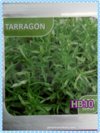 hb10 tarragon