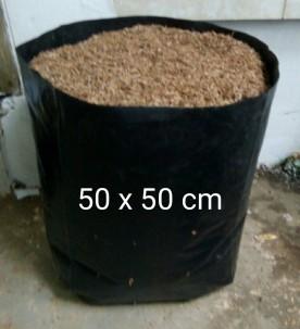 polybag 50 2