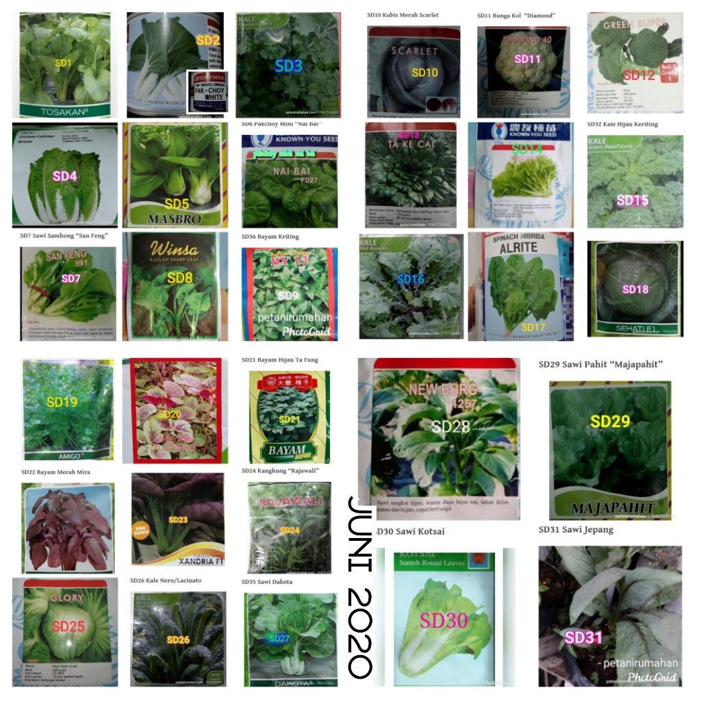 Gambar ini memiliki atribut alt kosong; nama filenya adalah sayuran-daun-juni.jpg